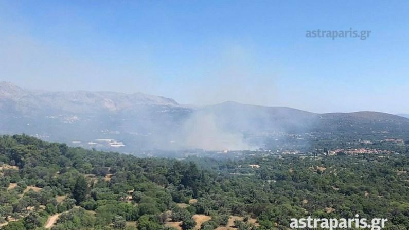 Φωτιά στη Χίο: Οι πρώτες εικόνες – Εντολή ετοιμότητας για εκκένωση δύο χωριών! (ΒΙΝΤΕΟ)