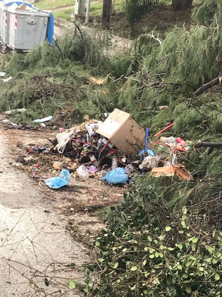 """Νέα Σελεύκεια Ηγουμενίτσας: """"Πόσες φορές πρέπει να διαμαρτυρηθούμε για τα σκουπίδια για να ιδρώσει το αυτί του Δημάρχου;"""" (φωτο """"Alert"""")"""