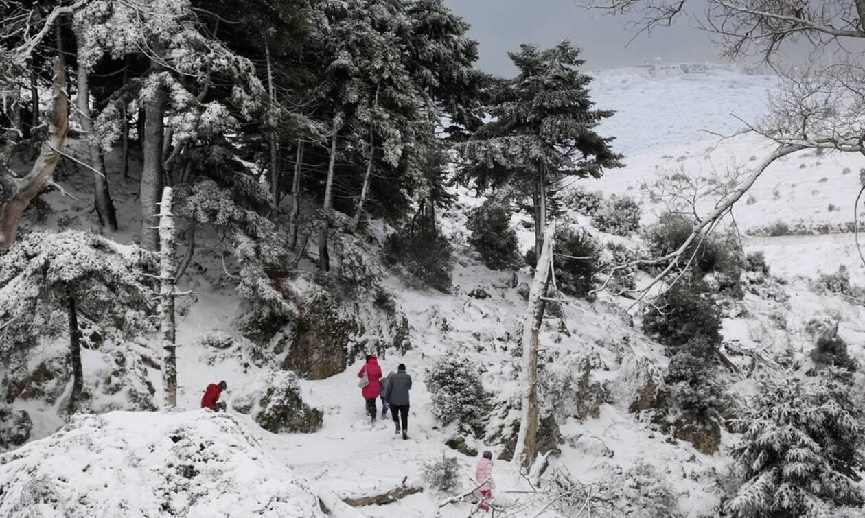 """Η """"Ζηνοβία"""" φέρνει ΡΑΓΔΑΙΑ ΠΤΩΣΗ της θερμοκρασίας! Που θα χιονίσει τις επόμενες ώρες!"""