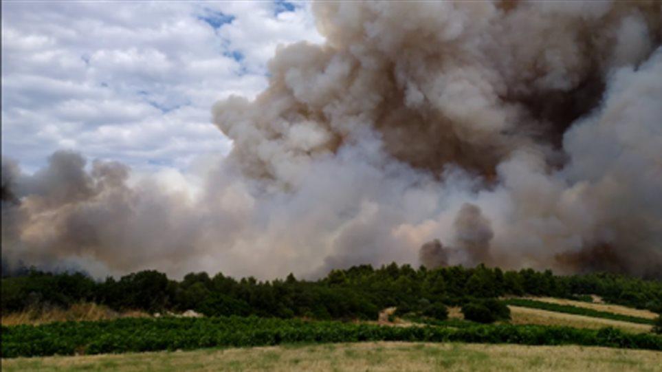 Αργολίδα: Μεγάλη πυρκαγιά σε δασική έκταση κοντά στην Ιερά Μονή Καρακαλά
