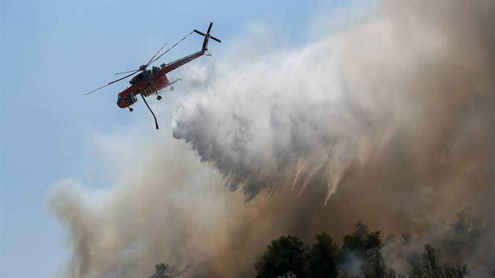 Φωτιά στην Εύβοια: Πώς γλιτώσαμε το νέο Μάτι! (ΦΩΤΟ)