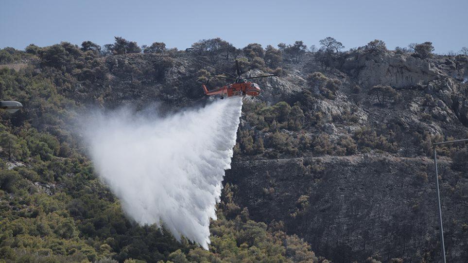 Μεγάλη φωτιά στο Ριόλο Αχαΐας – Καλύτερη εικόνα σε Ασπρόπυργο και Βάρδα! (ΦΩΤΟ)