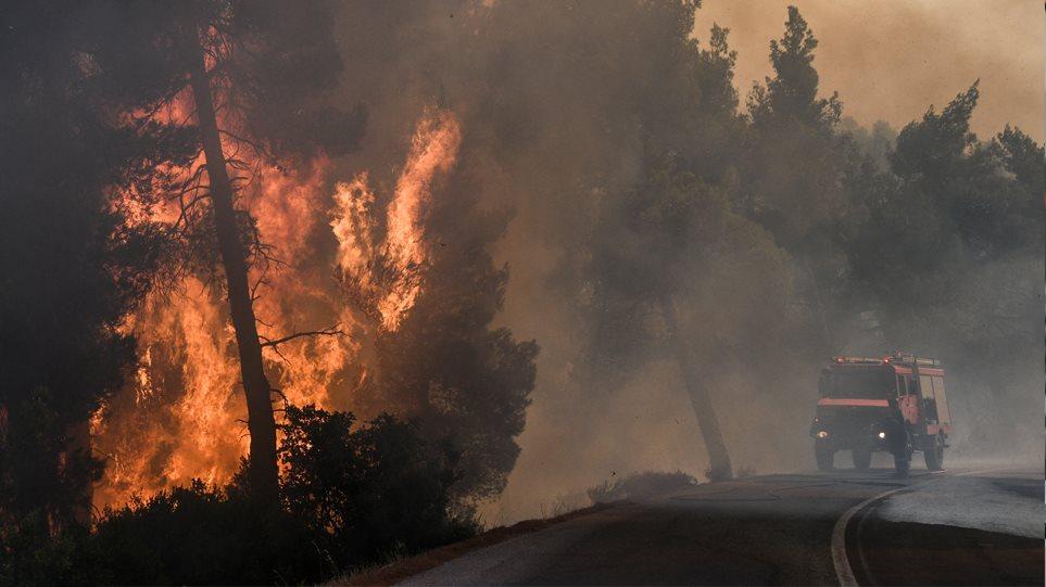 Ανεξέλεγκτη η φωτιά στην Εύβοια: Καίγεται το δάσος Natura – Ενισχύονται οι δυνάμεις της πυροσβεστικής! (ΦΩΤΟ&BINTEO)