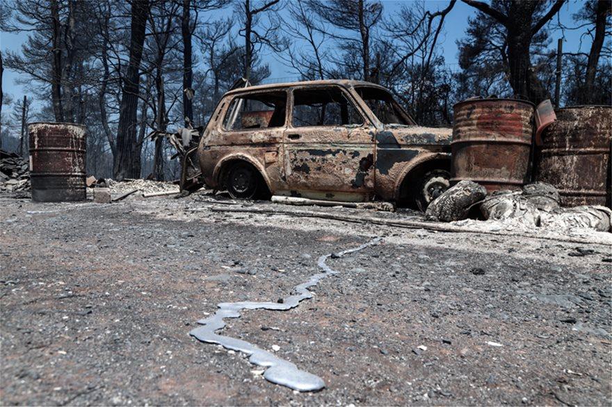 Φωτιά στην Εύβοια: Τα στοιχεία που «δείχνουν» εμπρησμό – Τρία τα ύποπτα άτομα! (ΦΩΤΟ&ΒΙΝΤΕΟ)