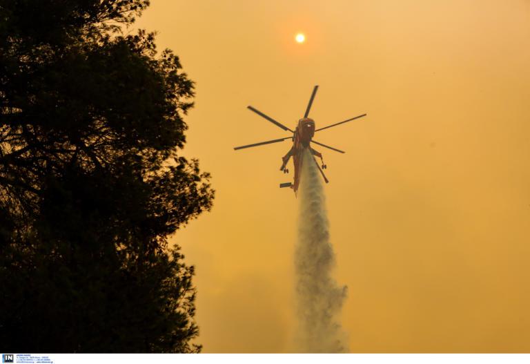 Η φωτιά στην Εύβοια καίει τα πάντα -Εκκενώνονται δύο χωριά!