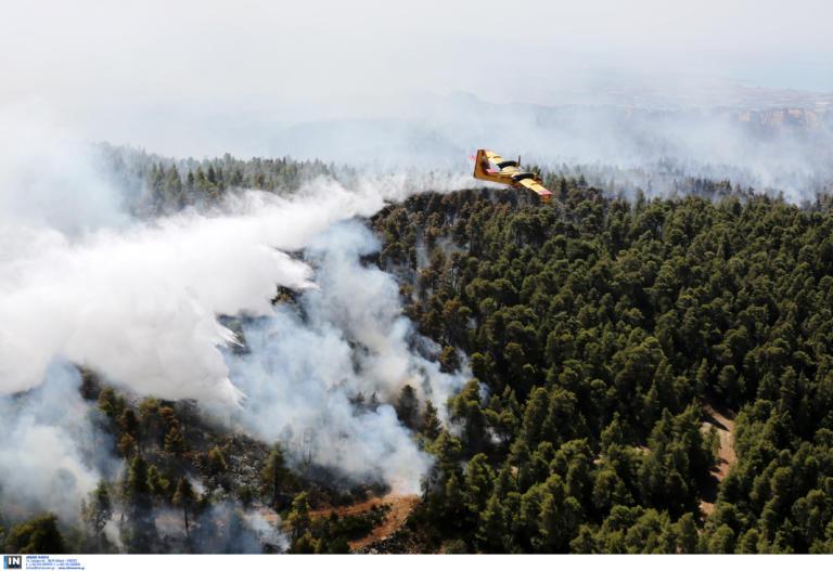 Φωτιά Εύβοια: Eφιάλτης και μάχη με τις διαρκείς αναζωπυρώσεις! (ΒΙΝΤΕΟ)