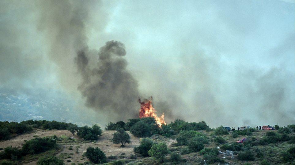 Μεγάλη φωτιά στη Μάνδρα: Συναγερμός στην Πυροσβεστική