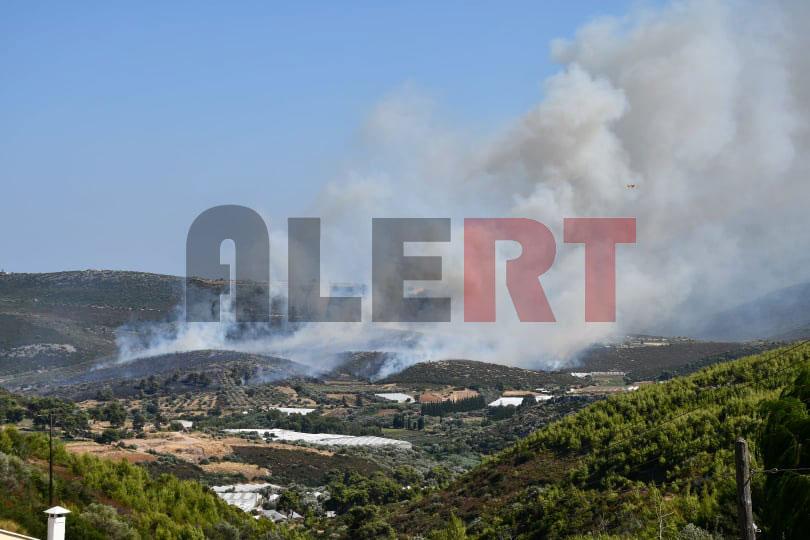 Μεγάλη φωτιά στον Μαραθώνα κοντά σε κατοικημένη περιοχή – Πολλαπλασιάζονται οι δυνάμεις! (φωτο&βιντεο)