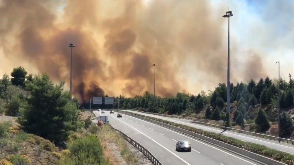 Συναγερμός στη Φθιώτιδα: Πυρκαγιά στο Μαρτίνο – Οι φλόγες πέρασαν την εθνική οδό! (ΒΙΝΤΕΟ)