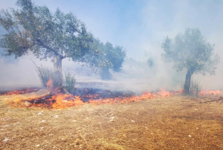 Μεγάλη φωτιά στον Ασπρόπυργο – Τραυματίστηκαν δύο πυροσβέστες! (ΒΙΝΤΕΟ)