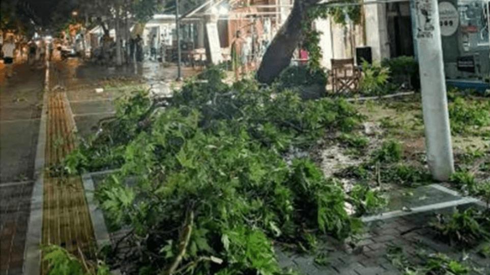 Χαλκιδική: Σε κατάσταση έκτακτης ανάγκης – Κυβερνητικό κλιμάκιο μεταβαίνει στην περιοχή