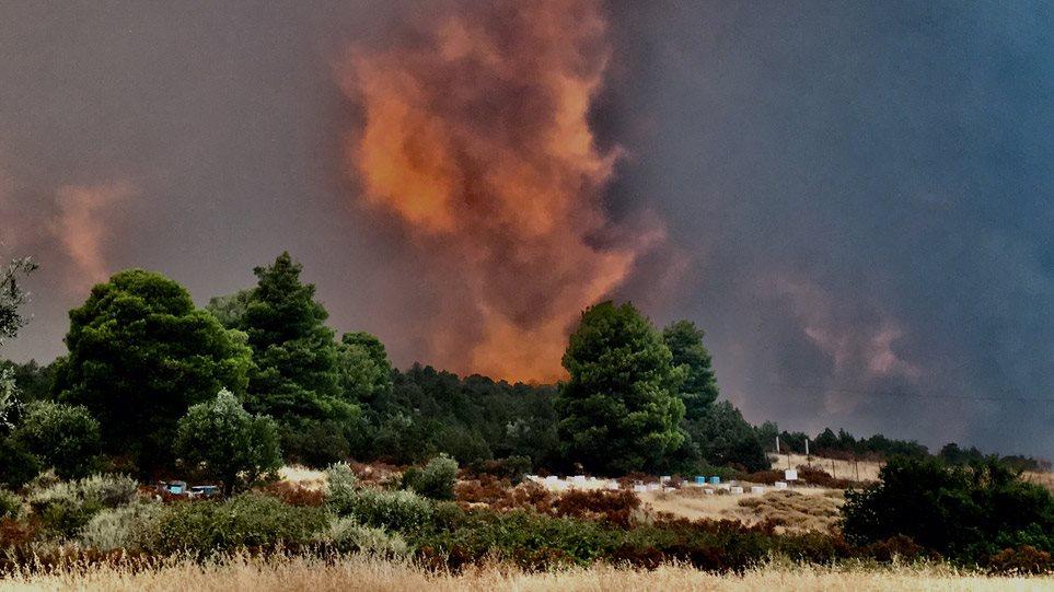 Φωτιά στην Εύβοια: Μέσα στο χωριό Μακρυμάλλη οι φλόγες – Εκκενώθηκαν τρία χωριά (ΒΙΝΤΕΟ)