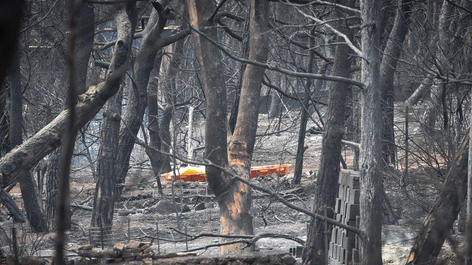 Ντοκουμέντο για την φωτιά στο Μάτι: Διάλογοι-σοκ από τις στιγμές που εντόπισαν τον πρώτο νεκρό