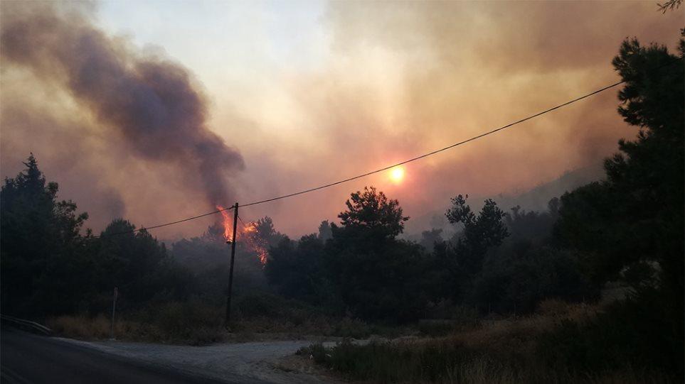 Φωτιά στη Σάμο: Μάχη με τις φλόγες – Εκκενώθηκαν ξενοδοχεία! (ΦΩΤΟ&ΒΙΝΤΕΟ)