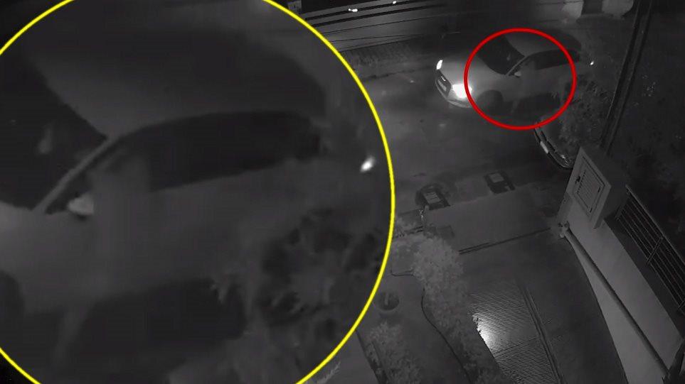 Δείτε συγκλονιστικό βίντεο: Η στιγμή της απόπειρας δολοφονίας του Στέφανου Χίου!