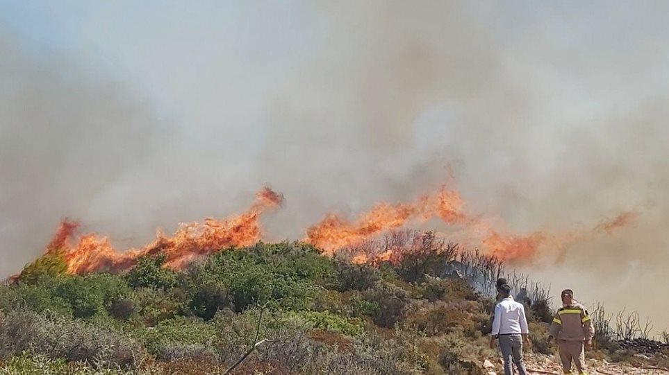 ΣΗΜΑΝΤΙΚΕΣ ΑΠΟΚΑΛΥΨΕΙΣ από τον Δήμαρχο Ζακύνθου:  Οργανωμένο κύκλωμα για τις πυρκαγιές στο νησί!